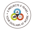 5 Projects 5 Years logo